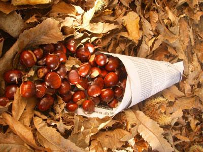Mercado da Castanha de 10 a 12 de Novembro