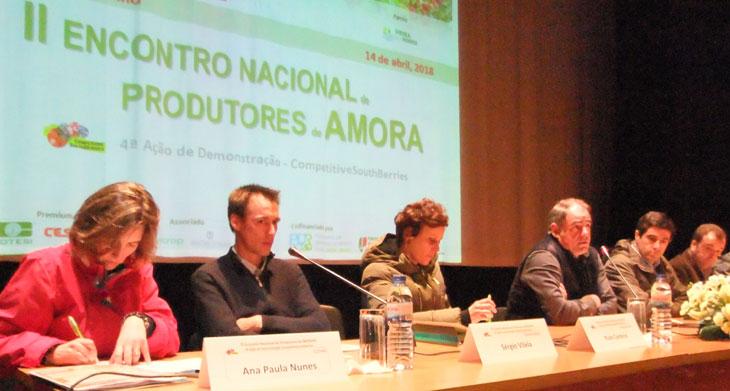 Vieira acolheu o II Encontro Nacional de Produtores de Amoras